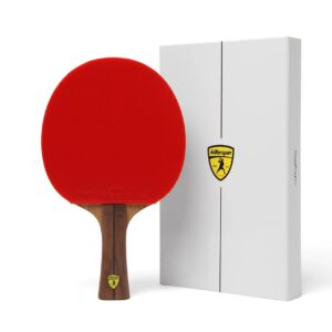 Killerspin Jet 800 Ping Pong Racket Review