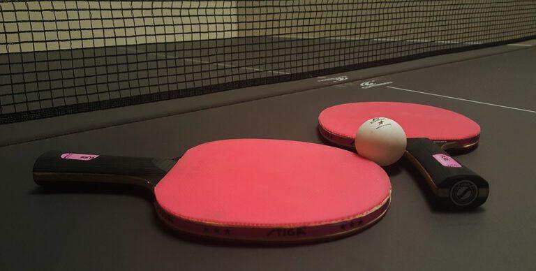 Stiga Ping Pong Paddle Reviews